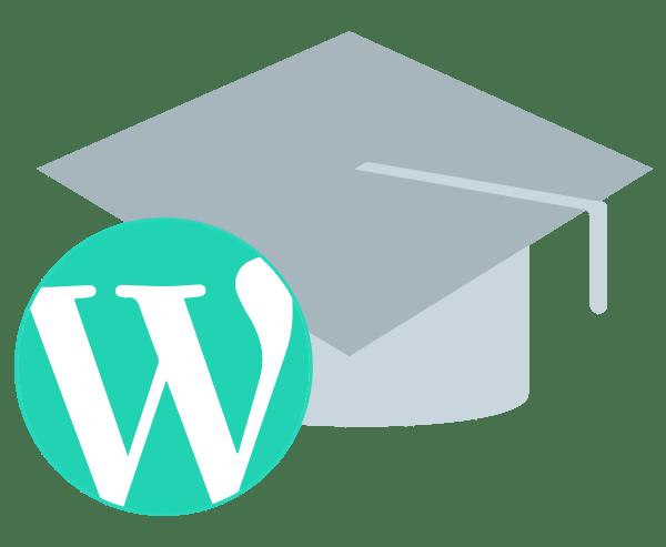 Illustration Service Schulung WordPress Einführung Anleitung Unterstützung