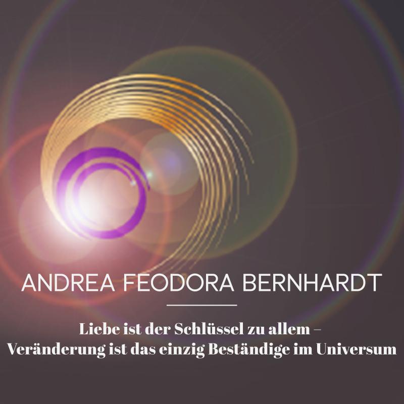 Kuki Design Logo Web Gestaltung Umsetzung Andrea Feodora Bernhardt